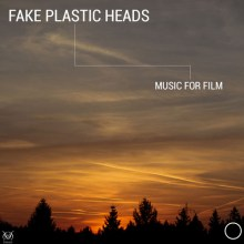 fake-plastic-heads-500